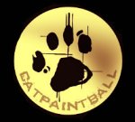 catpaintball